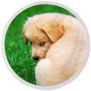 Puppy Love Round Beach Towel