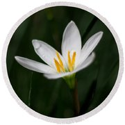 Pure White - Lily Round Beach Towel