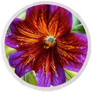Purple And Orange Round Beach Towel