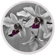 Purple And Pale Green Orchids - Black And White Round Beach Towel