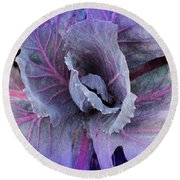 Purple Cabbage - Vegetable - Garden Round Beach Towel