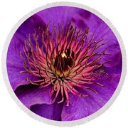 Round Beach Towel featuring the photograph Purple Clematis by Suzanne Stout
