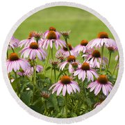 Purple Cone Flowers Round Beach Towel