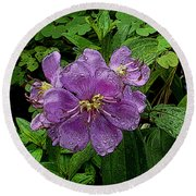 Round Beach Towel featuring the photograph Purple Flower by Sergey Lukashin