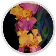 Purple Gold Irises  Round Beach Towel