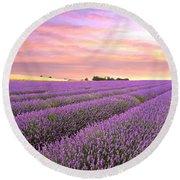 Purple Haze - Lavender Field At Sunrise Round Beach Towel