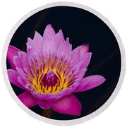 Purple Lotus Flower Round Beach Towel