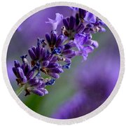 Purple Nature - Lavender Lavandula Round Beach Towel