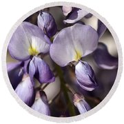 Round Beach Towel featuring the photograph Purple Of Wisteria by Joy Watson