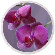 Purple Orchid Round Beach Towel by Kathy Eickenberg