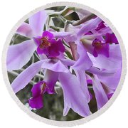 Purple Orchid Personality Round Beach Towel by Patricia Greer