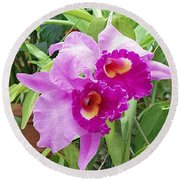 Purple Cattleya Orchids Round Beach Towel by Ellen Henneke