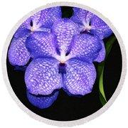 Purple Orchids - Flower Art By Sharon Cummings Round Beach Towel by Sharon Cummings