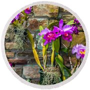 Purple Orchids With Cultured Stone Background Round Beach Towel