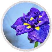 Purple Pond Iris Round Beach Towel