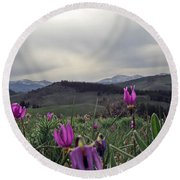 Round Beach Towel featuring the digital art Purple Spring In The Big Horns by Cathy Anderson