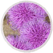 Purple Thistle - 2 Round Beach Towel