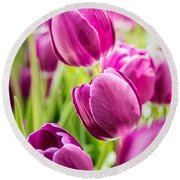 Purple Tulip Garden Round Beach Towel