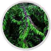 Round Beach Towel featuring the photograph Purple Vibe by Deborah  Crew-Johnson