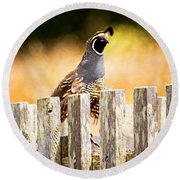 Quail Lookout Round Beach Towel