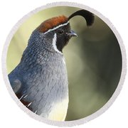 Quail Portrait Round Beach Towel