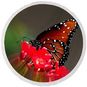 Queen Butterfly II Round Beach Towel