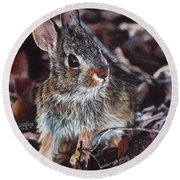 Rabbit In The Woods Round Beach Towel