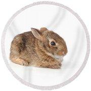 Rabbit Round Beach Towel