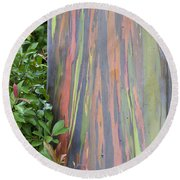 Round Beach Towel featuring the photograph Rainbow Eucalyptus by Bryan Keil