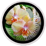 Rainbow Orchids Baseball Square Round Beach Towel by Andee Design