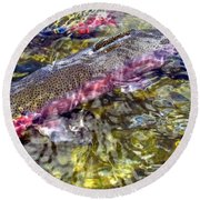 Rainbow Trout Round Beach Towel