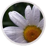 Rainy Day Daisy Round Beach Towel