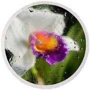Rainy Day Orchid - Botanical Art By Sharon Cummings Round Beach Towel by Sharon Cummings