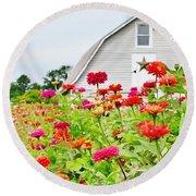 Raising Zinnia Flowers - Delaware Round Beach Towel