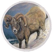 Round Beach Towel featuring the painting Ram In The Snow by Donna Tucker
