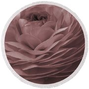 Round Beach Towel featuring the photograph Ranunculus Red by Jean OKeeffe Macro Abundance Art
