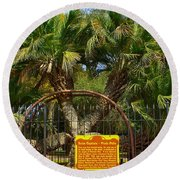 Rare Palm Tree Round Beach Towel by Debra Forand