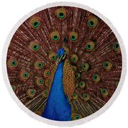 Round Beach Towel featuring the photograph Rare Pink Tail Peacock by Eti Reid