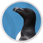 Razorbill Profile Round Beach Towel