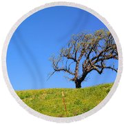 Round Beach Towel featuring the photograph Reach by Clayton Bruster