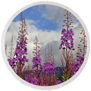 Round Beach Towel featuring the photograph Reach For The Sky by Cathy Mahnke