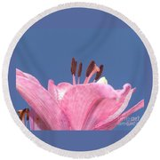 Reach For The Sky - Signed Round Beach Towel