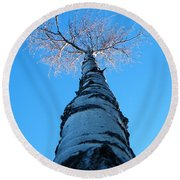 Reaching For The Light Round Beach Towel by Brian Boyle
