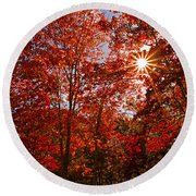 Round Beach Towel featuring the photograph Red Autumn Leaves by Jerry Cowart