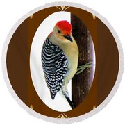 Round Beach Towel featuring the photograph Red-bellied Woodpecker Framed by Janette Boyd