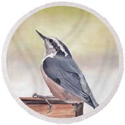 Red Breasted Nuthatch Round Beach Towel