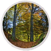 Red Carpet In Reelig Glen During Autumn Round Beach Towel