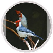 Red-crested Cardinal Round Beach Towel