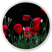 Round Beach Towel featuring the photograph Red Dance by Edgar Laureano