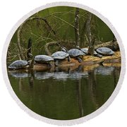 Red-eared Slider Turtles Round Beach Towel
